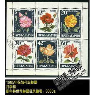 Bộ 6 Con Dấu In Hình Hoa Hồng Xinh Xắn 1985