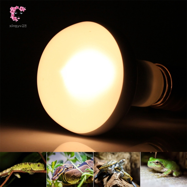 Pet Lamp 60W/75W/100W 220-240V E27 for Animals Birds Amphibians Tungsten Filament Lamp