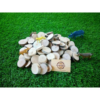100 miếng gỗ NGUYÊN VỎ đường kính 3~4 cm (kèm túi canvas)