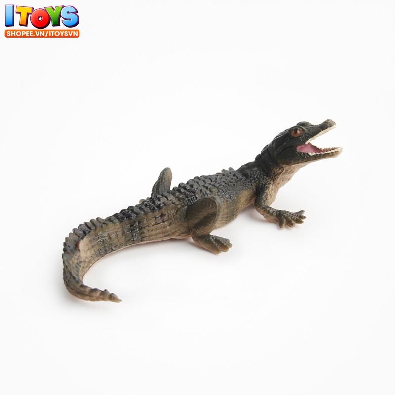 Mô hình cá sấu cực đẹp, đồ chơi cho bé ITOYS