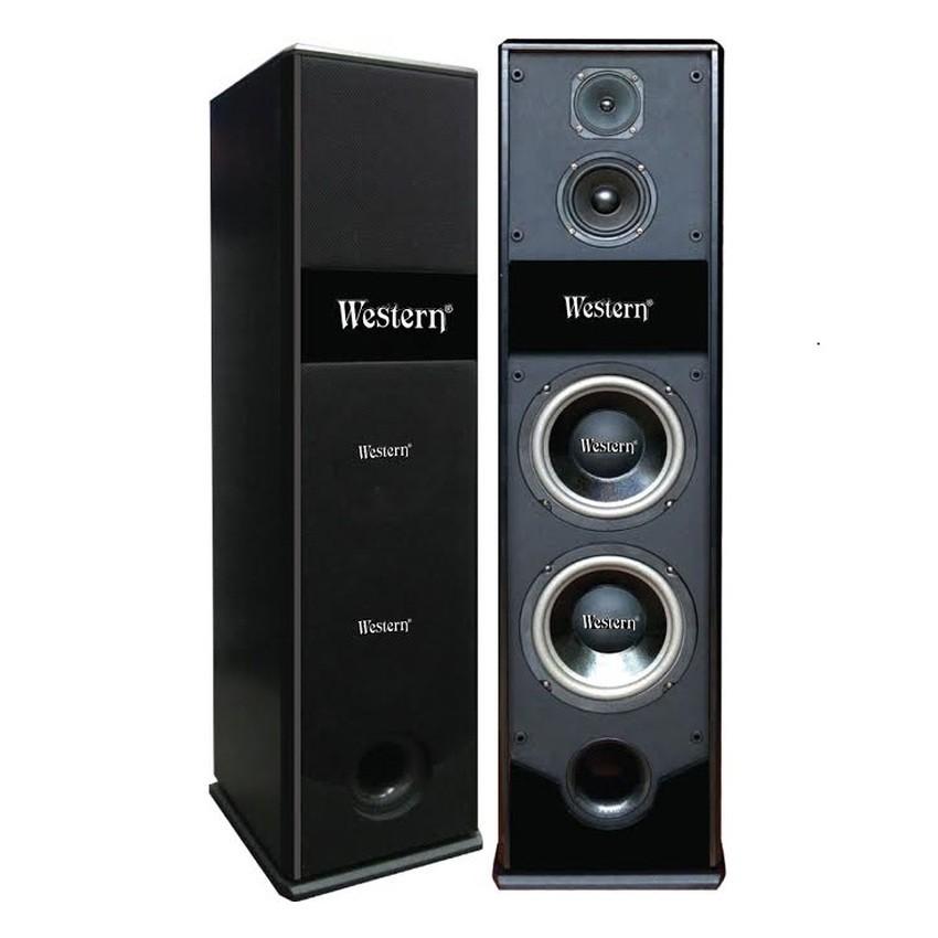Loa đứng Western WS- 7011 (Đen)