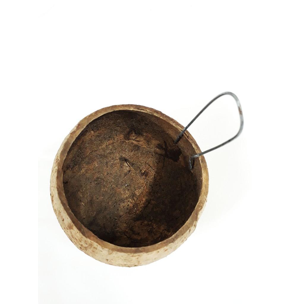 Gáo Dừa Cho Gà Ăn, Gáo Dừa Để Nước Uống Cho Gia Cầm - Phụ Kiện Gà - 3336512 , 1128085015 , 322_1128085015 , 5000 , Gao-Dua-Cho-Ga-An-Gao-Dua-De-Nuoc-Uong-Cho-Gia-Cam-Phu-Kien-Ga-322_1128085015 , shopee.vn , Gáo Dừa Cho Gà Ăn, Gáo Dừa Để Nước Uống Cho Gia Cầm - Phụ Kiện Gà