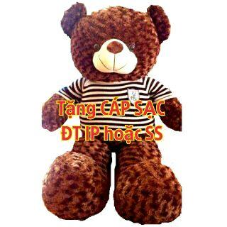(GIÁ HUỶ DIỆT) Gấu Teddy 1m3 theo khổ vải may