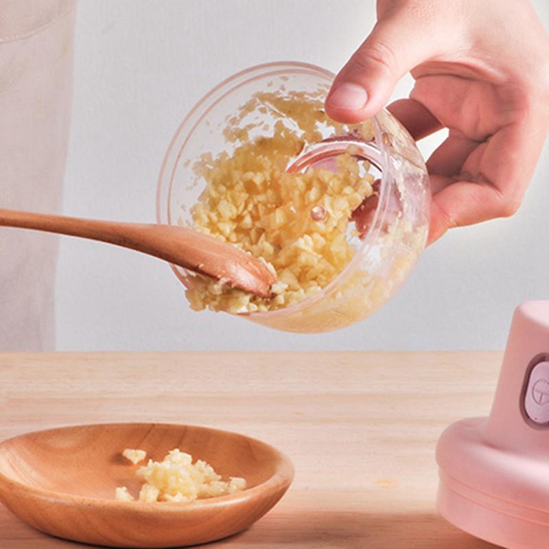Máy xay mini cầm tay 250 ml đa năng sạc pin xay tỏi ớt xay hành
