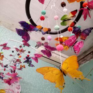 Treo nôi bướm chuyển động