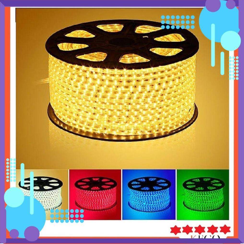 Đèn LED dây trang trí, hắt trần loại 2 mắt 1 hàng, dây đồng, cạnh bọc silicon chống ẩm tuyệt đối (giá cho 1m dây)
