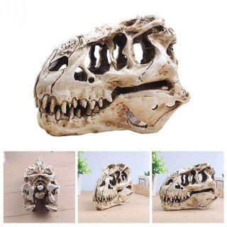 Mô hình hộp sọ khủng long T-Rex siêu chân thật