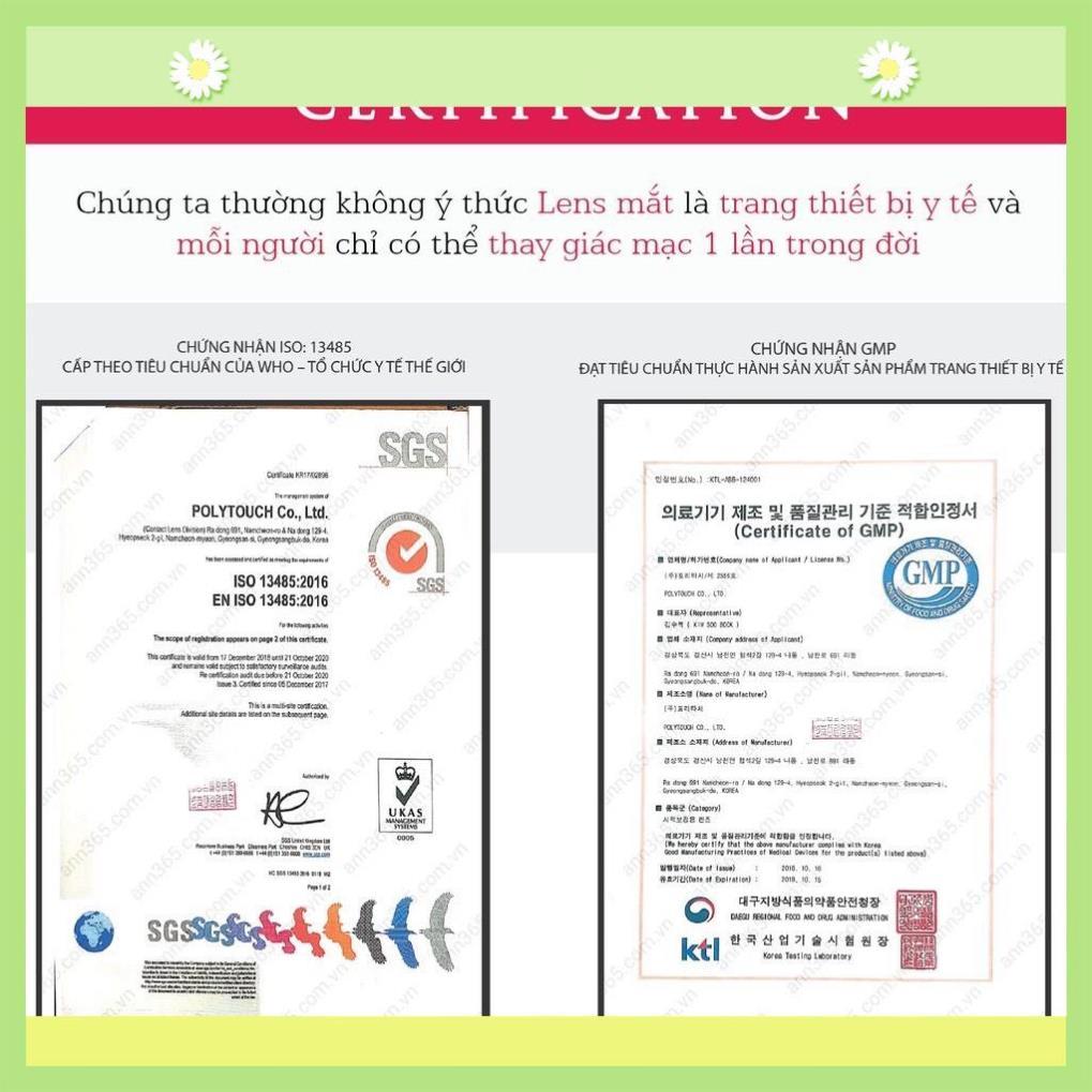 Lens mắt cận nội địa Hàn ANN365 5.0 - 6.0 độ - Bộ Sưu Tập 1 Ngày Màu Nâu, Xám...