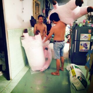 Heo Sữa 1m 4