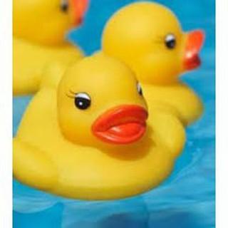 [ẢNH THẬT, HÀNG THẬT] Vịt con thả bồn tắm cho bé