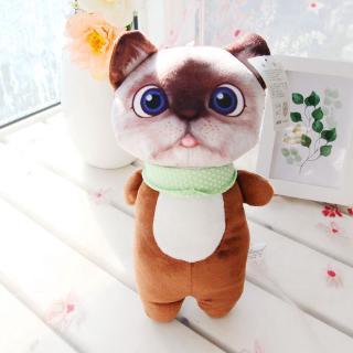 Mèo Thú Bông HQ