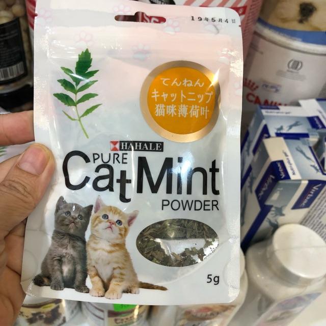 Cỏ mèo khô