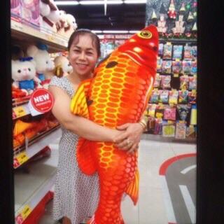 Gối 3D cá chép 1m2