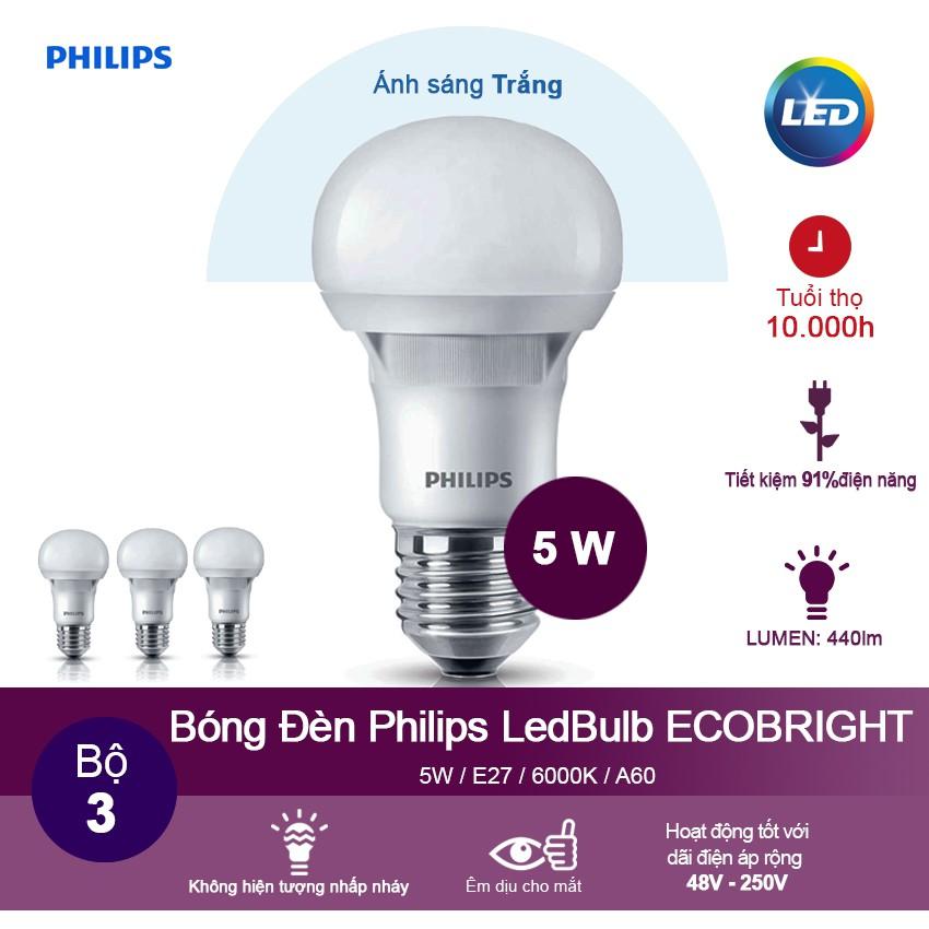 Bộ 3 Bóng đèn Philips Ecobright LEDBulb 5-60W E27 A60 6500K - Ánh sáng trắng