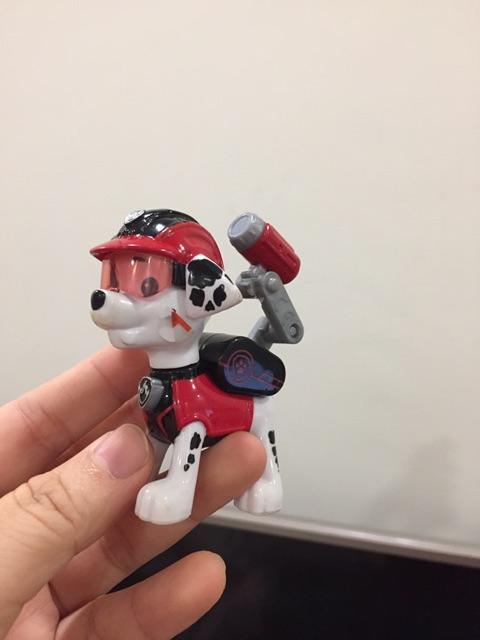 Chó cứu hộ hàng xuất Nhật