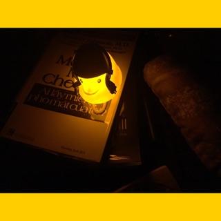 [GIAO MŨ NGẪU NHIÊN] Lẻ Vịt Gắn Xe Có Đèn Led