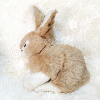 gấu bông con thỏ