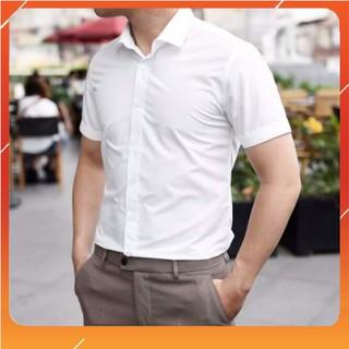 Áo sơ mi trơn ngắn tay công sở hàng chất đẹp giá rẻ phong cách Hàn Quốc