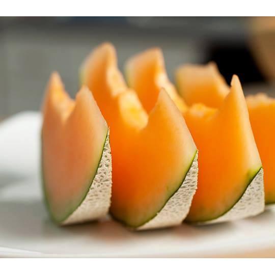 Trọn bộ 05 gói hạt giống dưa ngon ngọt mùa hè ( hạt giống dưa )