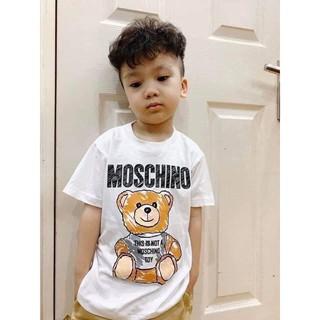 Áo Gấu Kid