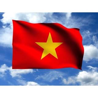 10 cờ tổ quốc ( giá sỉ )