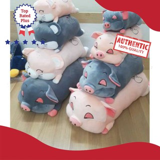 [SALE 80%] GẤu lợn bông xinh xắn