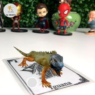 [SALE SIÊU HOT] Trọn bộ 31 thẻ Animal 4D cho bé