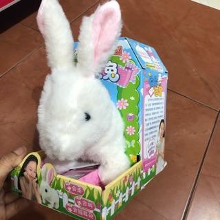 Thỏ biết đi biết ăn thích hợp làm bạn với trẻ nhỏ. ( hàng xuất nhật )
