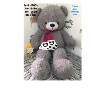Gấu bông teddy bear màu Grey đeo khăn choàng 1.6m giá ưu đãi 1.100.000