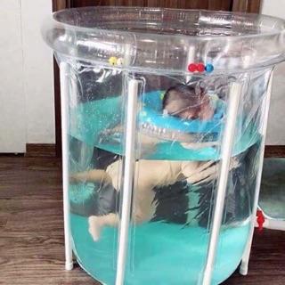 Bể bơi thành cao Doctor Dolphin size 80*80cm