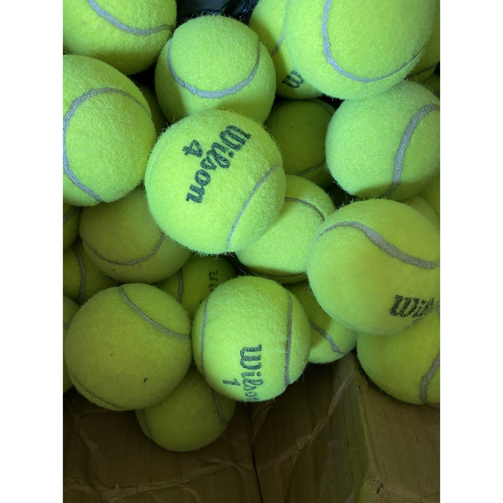 Đồ chơi banh tennis cho chó mèo