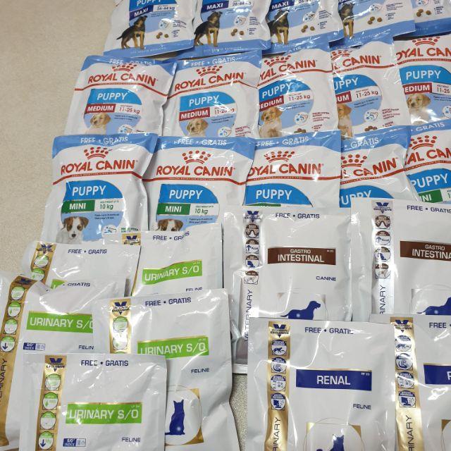 [Sale ] 50gr hạt Royal Canin đủ loại cho chó và mèo