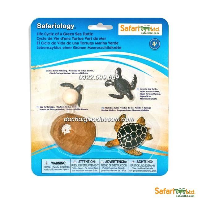 Mô hình safari - Vòng đời của Rùa biển - Hàng xuất dư
