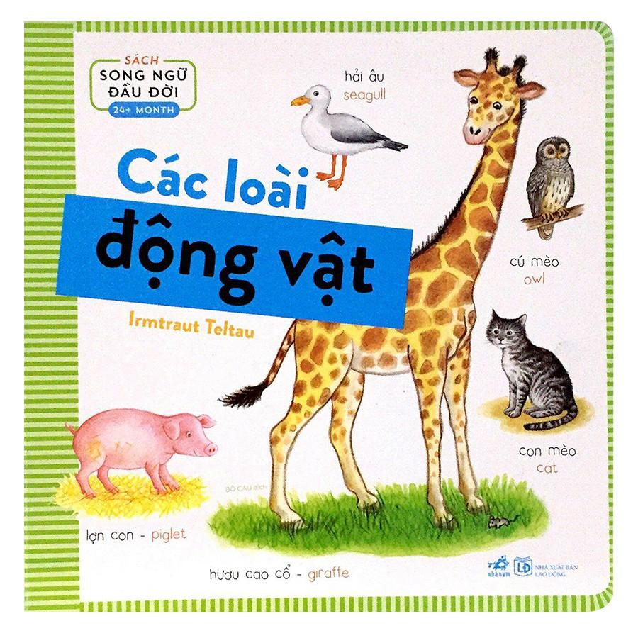 Sách song ngữ đầu đời 24+ month - Các loài động vật - 3025808 , 1019540967 , 322_1019540967 , 56000 , Sach-song-ngu-dau-doi-24-month-Cac-loai-dong-vat-322_1019540967 , shopee.vn , Sách song ngữ đầu đời 24+ month - Các loài động vật