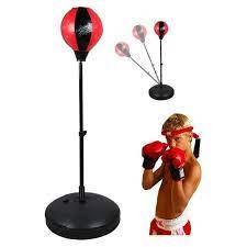 Boxing cho trẻ – tập luyện đấm bốc chó trẻ .