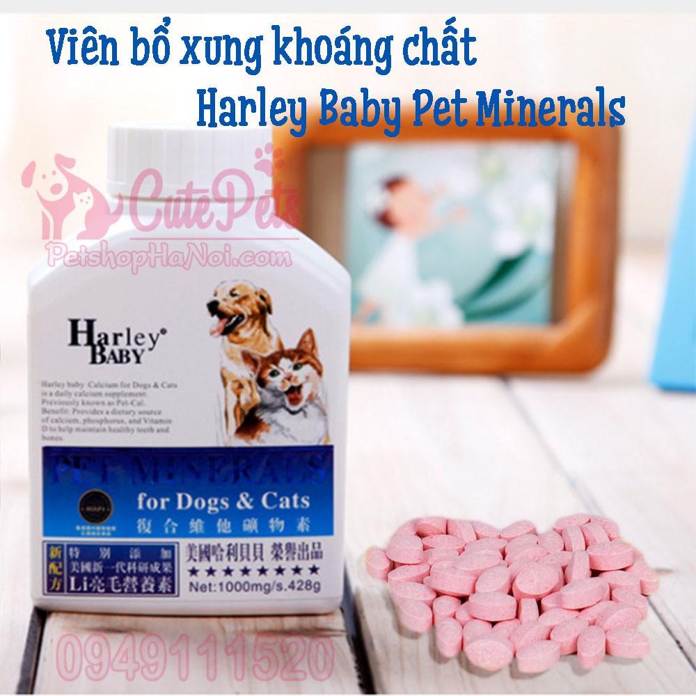[Combo 10viên] Viên Bổ xung khoáng chất vi lượng Harley Baby Pet Minerals - CutePets Phụ kiện chó mè - 3385613 , 1321247916 , 322_1321247916 , 20000 , Combo-10vien-Vien-Bo-xung-khoang-chat-vi-luong-Harley-Baby-Pet-Minerals-CutePets-Phu-kien-cho-me-322_1321247916 , shopee.vn , [Combo 10viên] Viên Bổ xung khoáng chất vi lượng Harley Baby Pet Minerals -