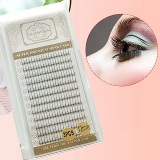 Premade Fan Volume Eyelash Extensions 3D 5D 6D Cluster Lashes Curl Pretty  Nice