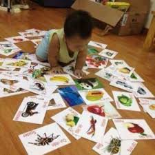 Thẻ học thông minh loại size lớn - 14 chủ đề - kèm tô màu cho bé theo phương pháp Glenn Doman