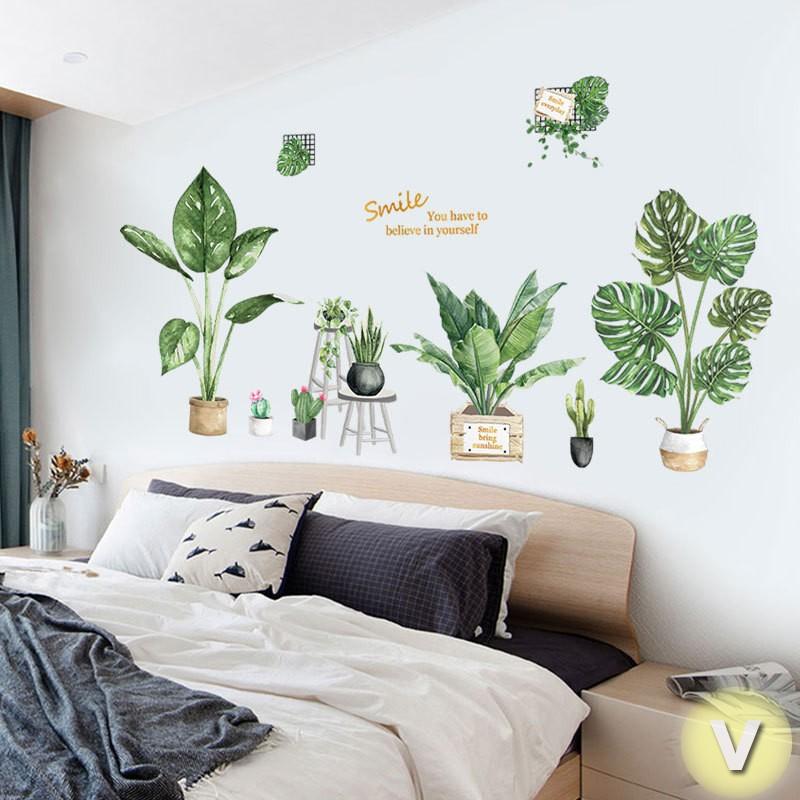 Decal dán tường Chậu cây bách thảo