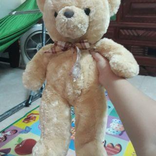 Gấu của kim Lunh