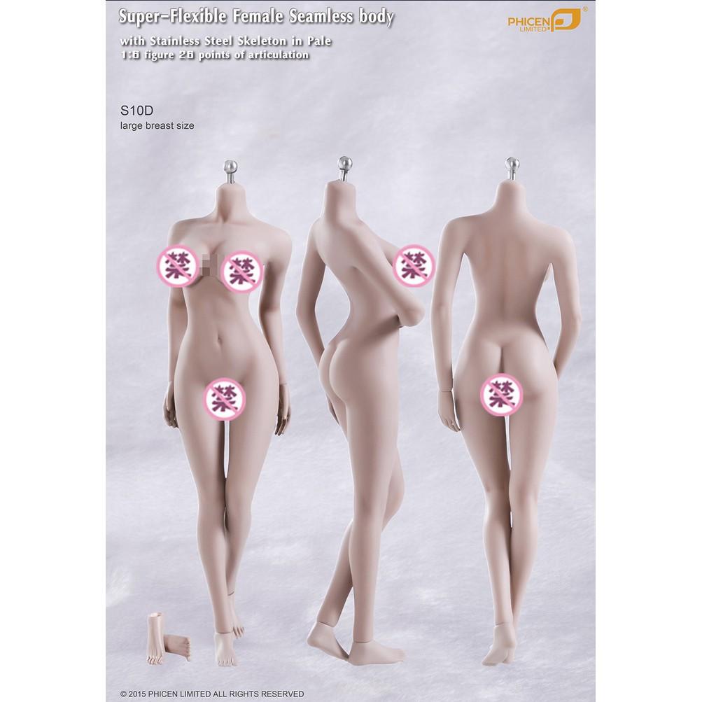 Mô hình cơ thể nữ Female Body S01A S04B S07C S10D Phicen TBLeague ...