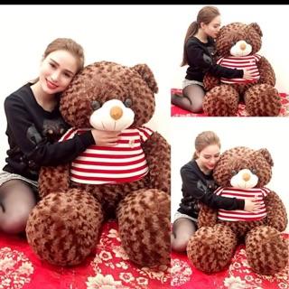 Gấu Teddy khổ vải 1m4 Size thật 1m2 hàng VNXK