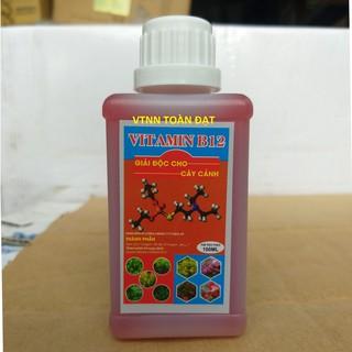 (chai 100ml) Phân Bón Lá Vitamin B12 Giải Độc Cho Cây Cảnh, Hoa Lan... thumbnail