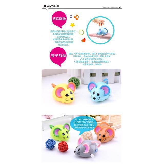 Đồ chơi vặn cót hình chọn Chuột IQAngel ,đồ chơi đáng yêu,đồ chơi trẻ con,đồ chơi vặn cót