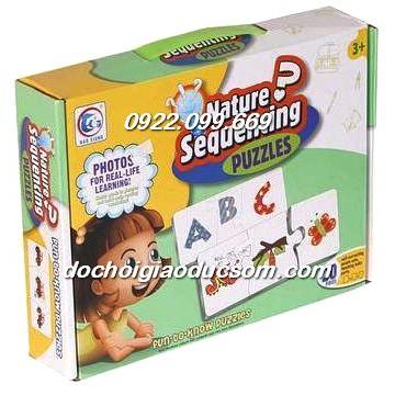 Bộ thẻ ghép 3 bước phát triển Nature Sequencing Fun to grow
