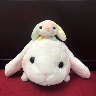 Amuse – Thỏ Loppy phiên bản đặc biệt