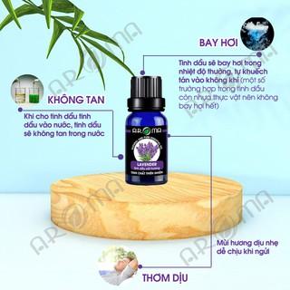 Tinh dầu thơm phòng Oải hương Lavender tinh dầu AROMA khử mùi ngủ ngon 6