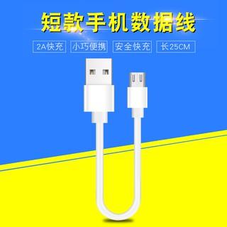 Dây Cáp Sạc Nhanh 25cm Type-C Cho Iphone12