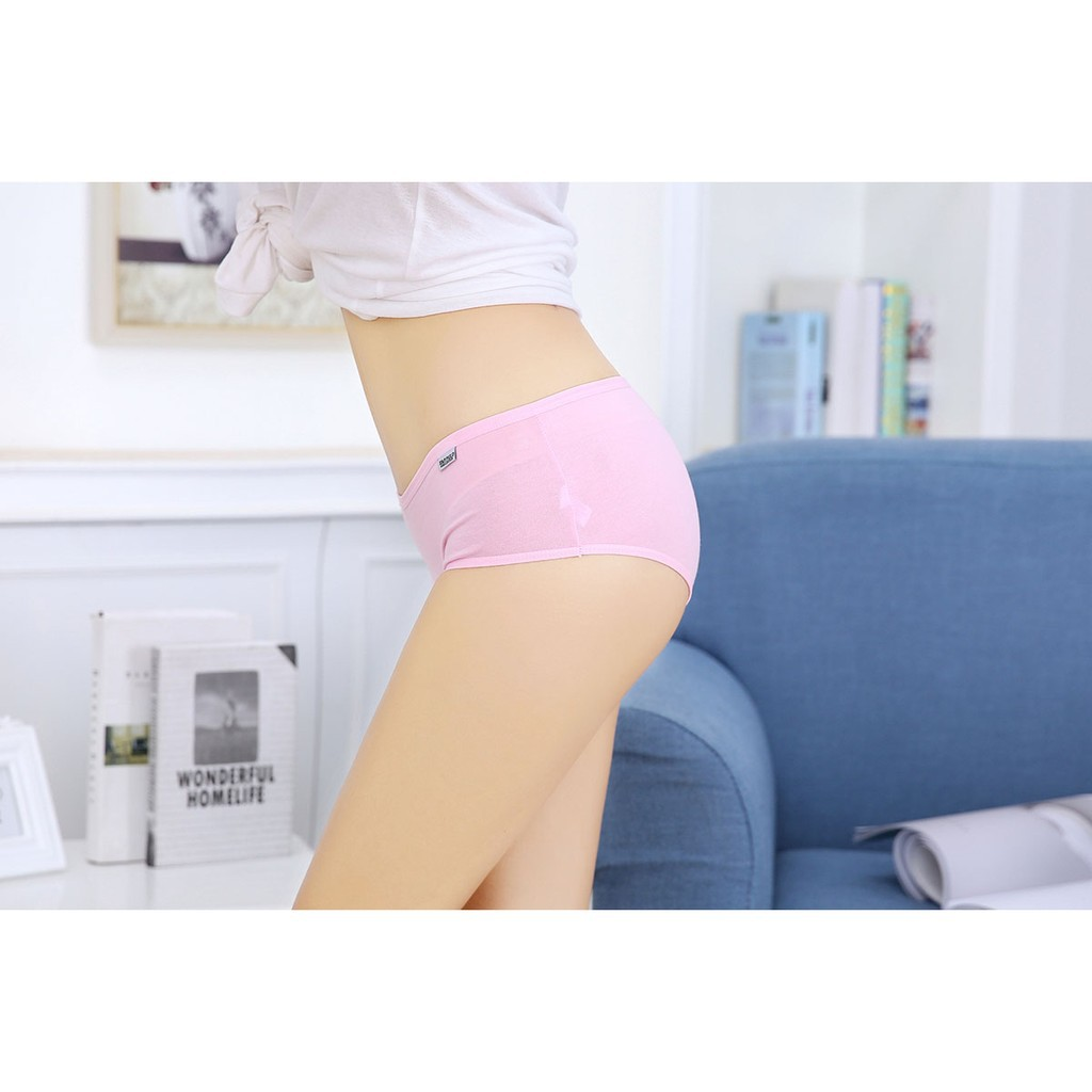 Đồ lót,đồ ngủ-Quần lót cotton Pulo size to XL