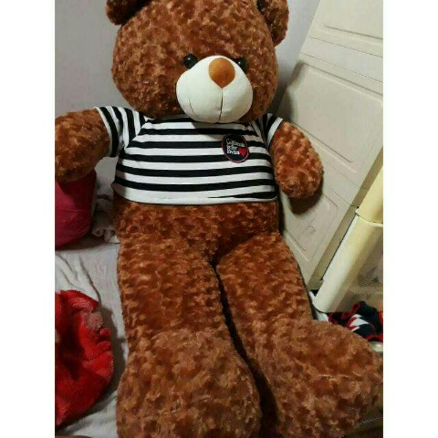 Gấu bông teddy dễ thương 1m2 khổ vải 1m4